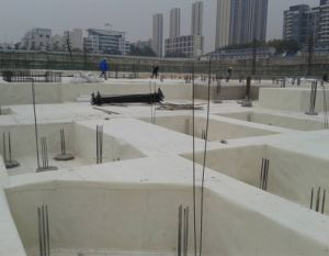 Pre Applied HDPE Waterproof Membrane Adhering to Concrete pictures & photos
