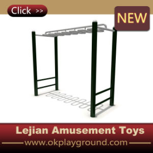 Wonderful Superior Castle Outdoor Fitness Equipment (12168D) pictures & photos