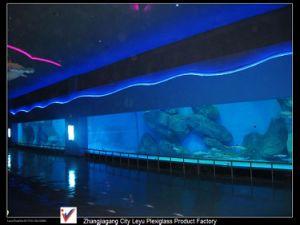 Cast Acrylic Panels Aquarium Window Plexiglass pictures & photos