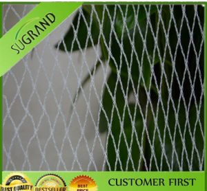 HDPE Bird Barrier Nets pictures & photos