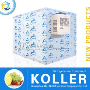CE Approved 12 Tons Walk in Freezer for Fish and Meat Storage pictures & photos