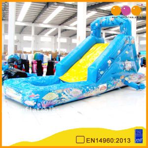 Giant Undersea Fish Inflatable Water Slide (AQ1080-1) pictures & photos