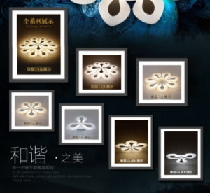 Festival Acrylic Flower LED Ceiling Light Modern Guarantee 100% pictures & photos