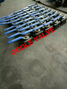 3 PCS Forged Steel Floating Ball Valve (Q61F/PEEK) pictures & photos
