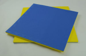 Tatami Karate Mat 20mm Thick Blue and Red or Red and Yellow for XPE Foam pictures & photos