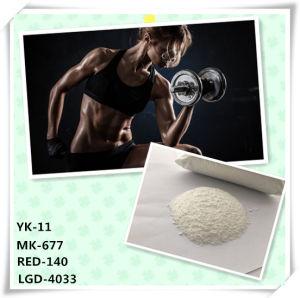 99% Factory Direct Sarms Mk-677 Ibutamoren Hormone Powder pictures & photos