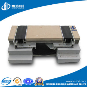 Aluminum Floor Expansion Joints for Buildings pictures & photos