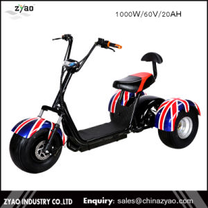 1000W60V Front Back Suspension New Citycoco Harlley Three Wheel Electric Scooter/Cheap Electric Trike /E-Bicycle pictures & photos