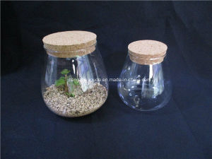 Borosilicate Glass Jar with Cork pictures & photos