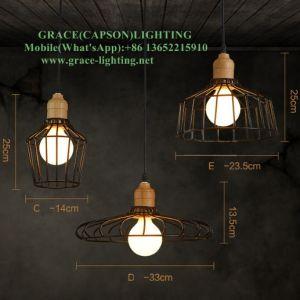 Nordic Retro Iron Track Cafe Shop Pendant Light (GD-603-1D) pictures & photos