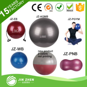 No1-5 Fitness Ball Yoga Mat Bouncing Ball Yoga Swiss Ball pictures & photos