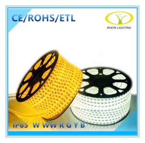 Ce RoHS Listed 220V IP65 LED Strip Light pictures & photos