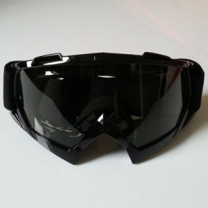Hot Sale Ski Goggles/Eyewear for Motorcycle Riders (AG015) pictures & photos