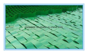 HDPE Geocell Price Used in Road Construction for Slope Protection pictures & photos
