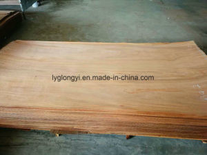 Gurjan Plywood Core Veneer