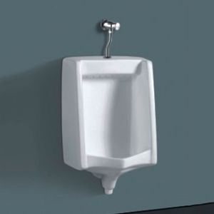 China Wall Hung Flushing Urinals pictures & photos
