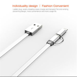 2 in 1 Charging Sync Data USB Cable for iPhone Samsung pictures & photos
