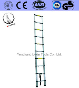 Reliable Reputation 9 Steps Aluminum Ladder pictures & photos