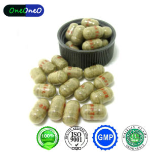 High Quality 100% Natural Health Food Ginseng Kianpl Pil for Get Weight. pictures & photos