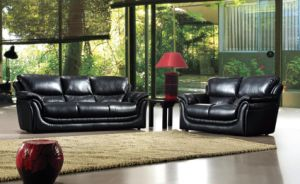 Living Room Sofa Furniture Leather Sofa for Modern Design Home Sofa pictures & photos