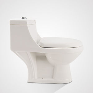 China Porcelain Dual Button Water Saving One Piece Water Closet pictures & photos
