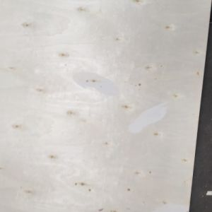 18mm E1 Glue BB/CC Grade Full Poplar Plywood pictures & photos
