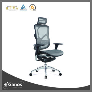 New Arrive Ergonomic Mesh Home Furniture Chair (Jns-502) pictures & photos