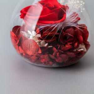 Promotion Flower in Glass for Christmas Gift pictures & photos
