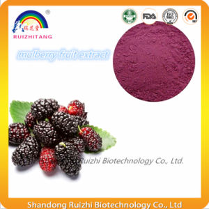 Health Food Mulberry Juice Extract Powder pictures & photos