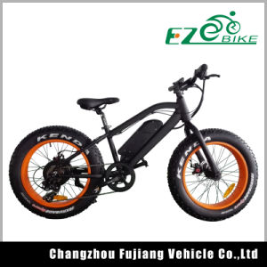 20inch 350W Fat Tire Beach Electric Bicycle pictures & photos