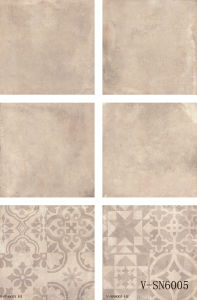 Interior Flooring Matt Different Faces Natural Cement Porcelain Tile (600X600mm)