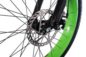 48V 750W Brushless Hi-Speed Fat Tire Ebike pictures & photos