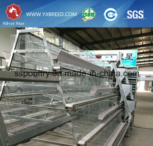 Poultry Farming Equipment H Type Layer Chicken Cage pictures & photos