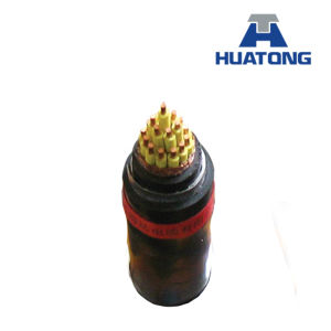 450/750V PVC Insulation and Sheathed Control Cable pictures & photos