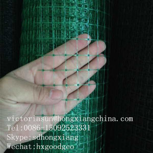Plastic Mesh Netting pictures & photos