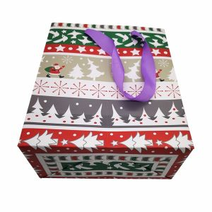 Wholesale Cheap High Quality Christmas Gift Paper Bag with Handle pictures & photos