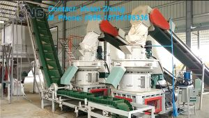 2-3t/H Biomass Pellet Machine pictures & photos