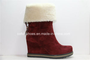 2015fw Newest High Heels Fashion Women Leather Boots pictures & photos