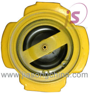 Fuel Pump Check Valve pictures & photos