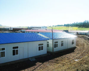 Project Site Prefabricated Home Houses