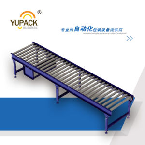 Chain Driven Live Roller Conveyor / Power Roller Conveyor pictures & photos