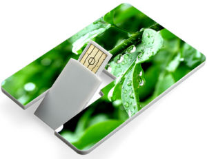 Customed Card USB Flash Driver.