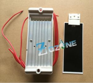 110V 5g Ozone Generator Used with Ceramic Ozone Plate pictures & photos