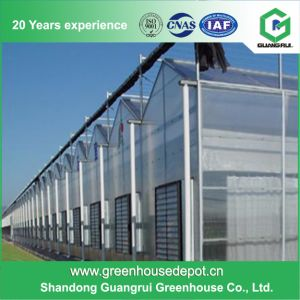 China Supplier PC Sun Board Small Conservatory Shed Greenhouse for Plants pictures & photos