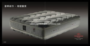 Popular Luxury Hotel Spring Mattress for Ages Peopel pictures & photos