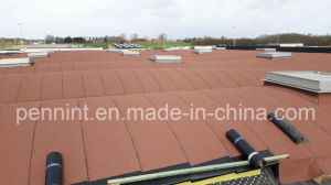 Sbs HDPE Cross Lamninated Film Waterproof Membrane pictures & photos
