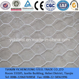 Q195 Hot Dipped Galvanized Iron Green Chain Link Fence pictures & photos
