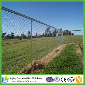 High Quality of Chain Link Fence/Diamond Wire Mesh