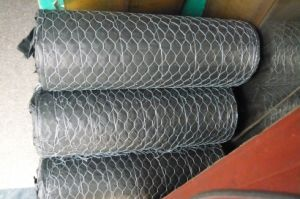 Factory Supply Hexagonal Wire Mesh pictures & photos