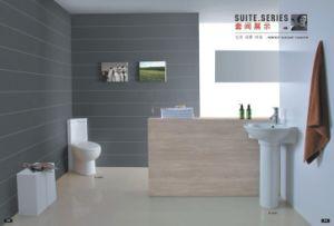 Sanitary Suite (06)